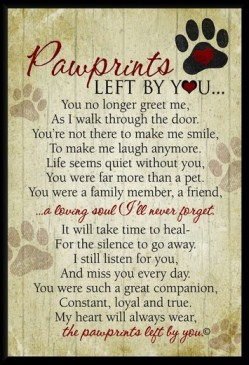 paw prints poem